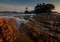 Geology revealed from receeding tide