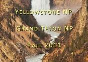 featured YNP GTNP